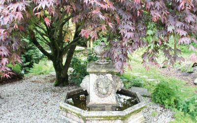 Ein Blick über den Gartenzaun