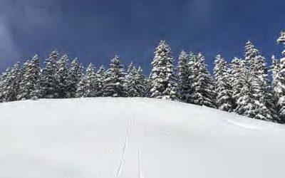 Winterliche Ausflugstipps