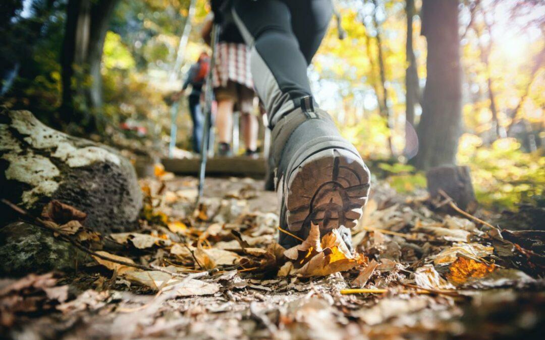 Wanderverein Waldbröl – Restlicher Wanderplan 2021